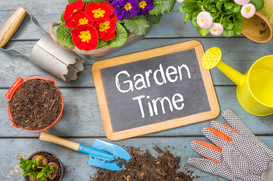 How to prepare a home garden in Gilbert, AZ