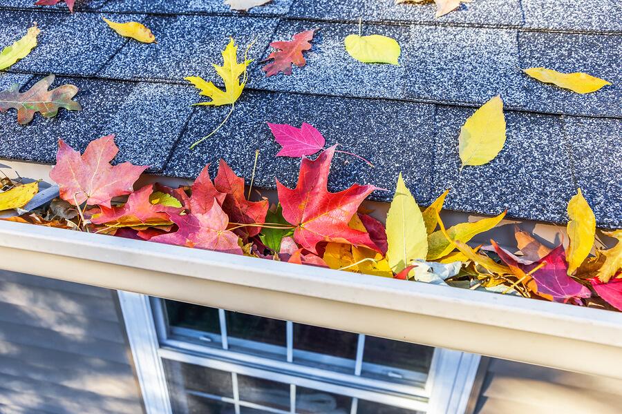 Fall Home Maintenance Checklist for your Gilbert, AZ home