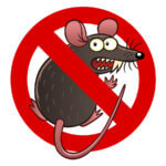 Rodent damage coverage for your car in Gilbert, AZ