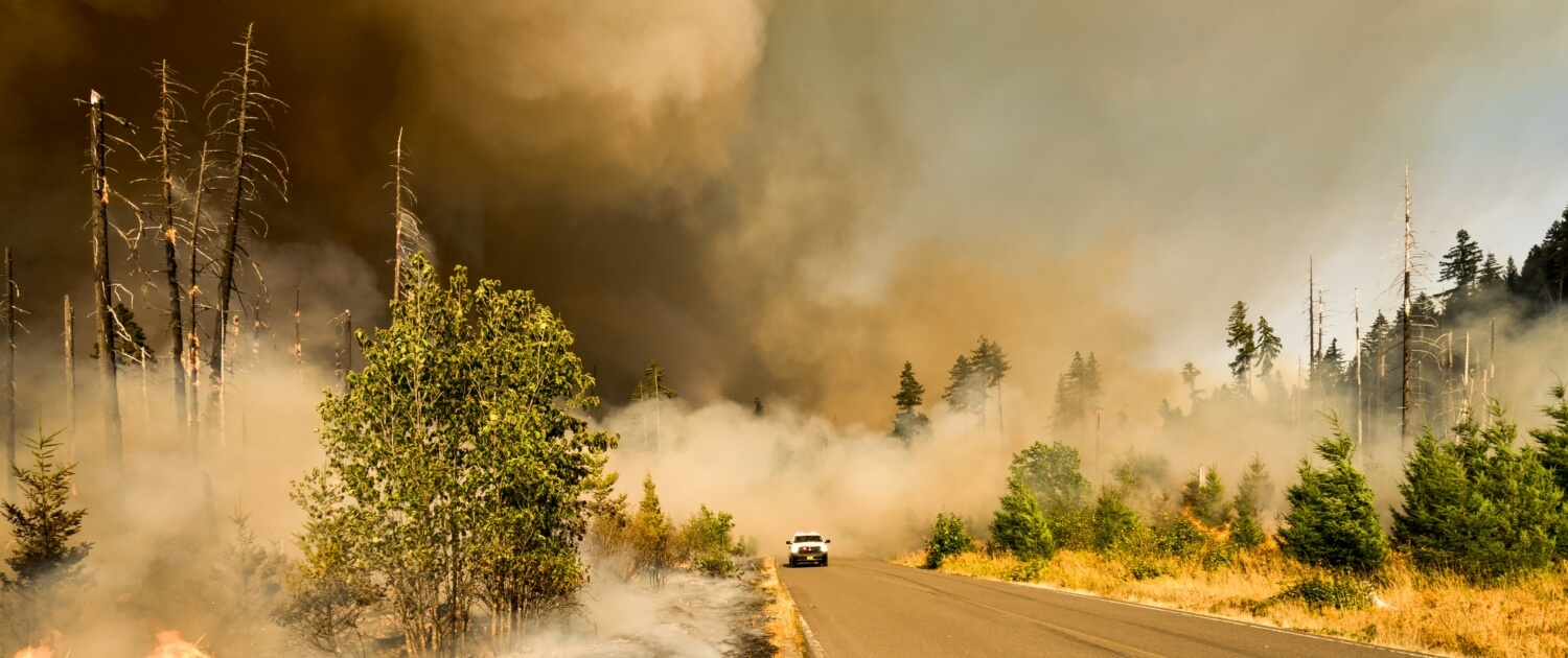 It's National Preparedness Month - Here is how it relates to your insurance in Gilbert, AZ